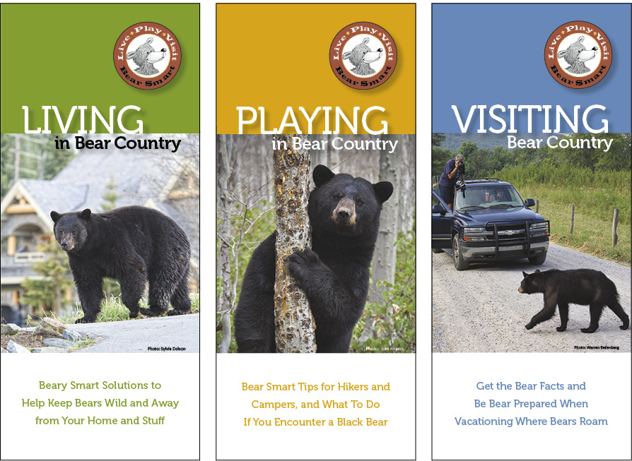 3 BearSmart guides